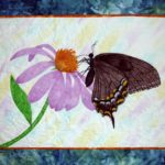 lasalle_coneflower-and-swallowtail